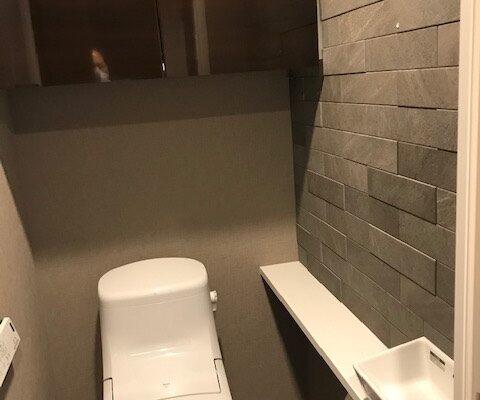 トイレのエコカラットプラス ラフクォーツ ダークグレー